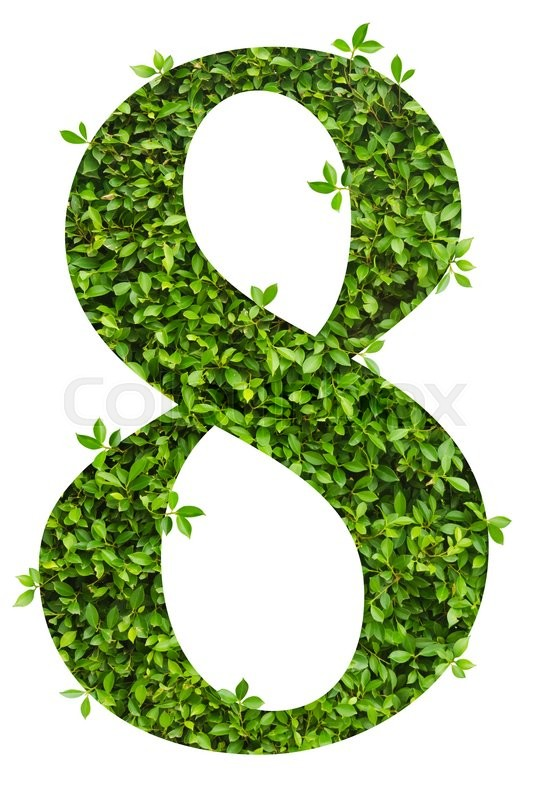 Stock image of 'number 8, alphabet of green leaves on white background'