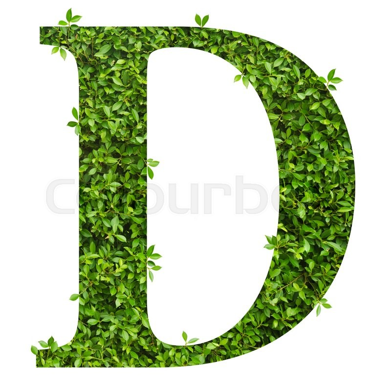 Stock image of 'Letter D, alphabet of green leaves on white background'