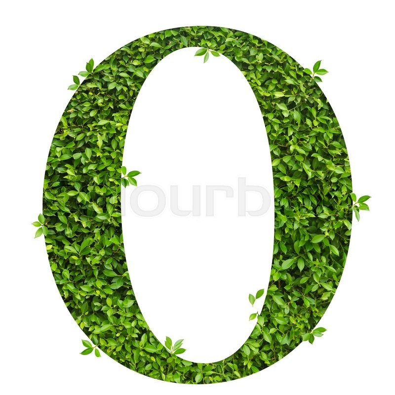 Stock image of 'Letter O , alphabet of green leaves on white background'
