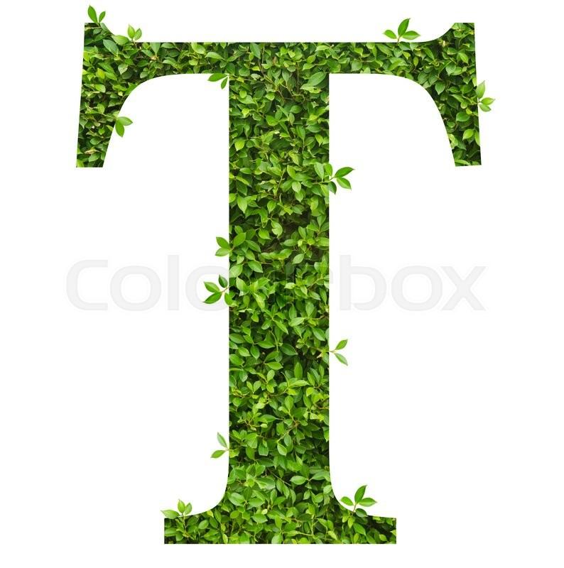 letter t alphabet of green leaves on white background
