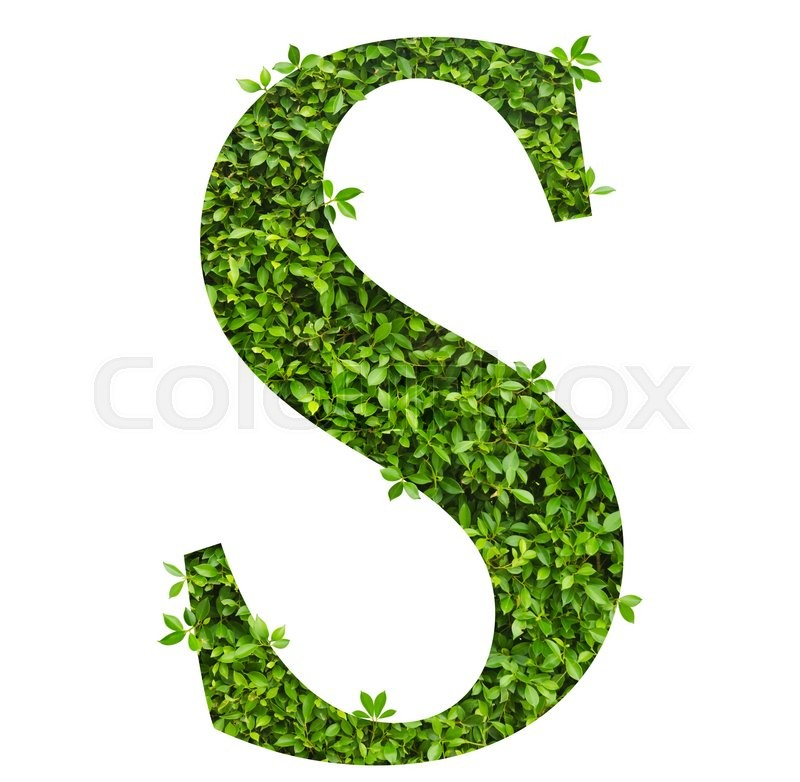 Stock image of 'Letter S , alphabet of green leaves on white background'