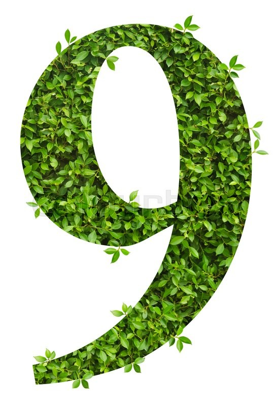 Stock image of 'number 9, alphabet of green leaves on white background'