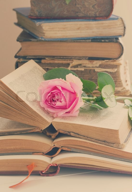Stock image of 'Pile of old books with pink rose flower, retro toned'