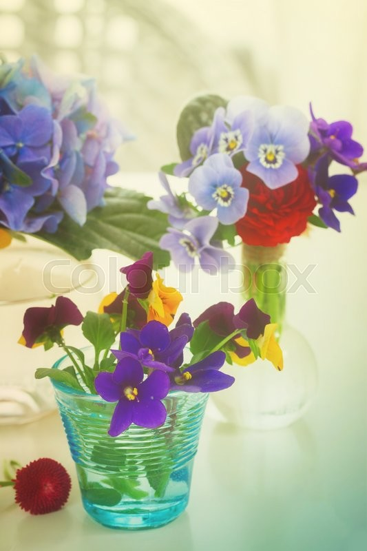 Stock image of 'Colorful violets and pancies cut flowers in vases on white table, retro toned'