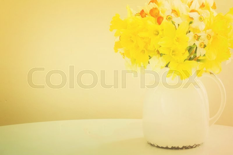 Stock image of 'Fresh spring daffodils in clay white pot on table, retro toned'