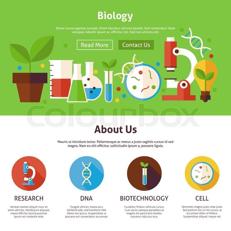 Vector Illustration Web Designs: Biology Science Flat Web Design ...
