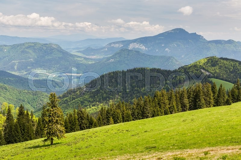 Stock image of 'View to the Mountain Cebrat from Mountain Malino in Slovakia in summer 2015'