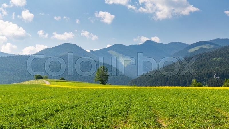 Stock image of 'View of the nature in Liptov region between the cities Ruzomberok and Liptovsky Mikulas in Slovakia, summer 2015'