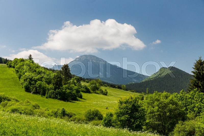 Stock image of 'View of the mountain Choc in Liptov region between the cities Ruzomberok and Liptovsky Mikulas in Slovakia, summer 2015'