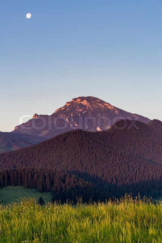 Stock image of 'View of the mountain Choc at sunrise near Dolny Kubin, Slovakia in summer 2015'