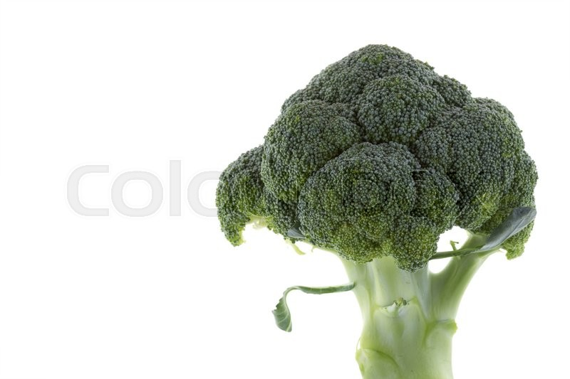 Stock image of 'green vegetable broccoli isolated on white background'
