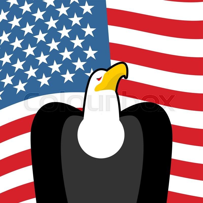 Bald Eagle Usa National Symbols Large Birds Of Prey And Flag Of
