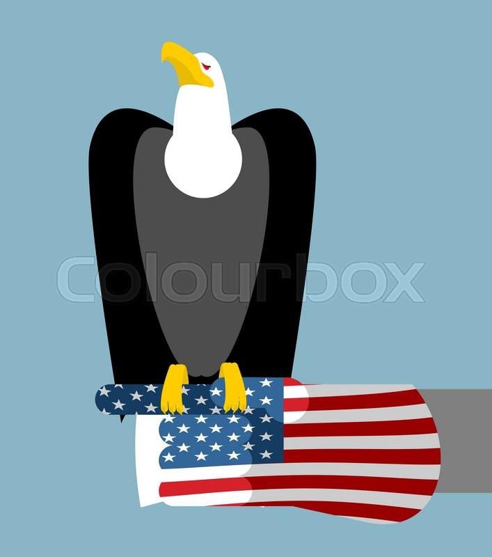 American Patriotic Eagle Hunting Bald Eagle Sitting On Glove Of Usa