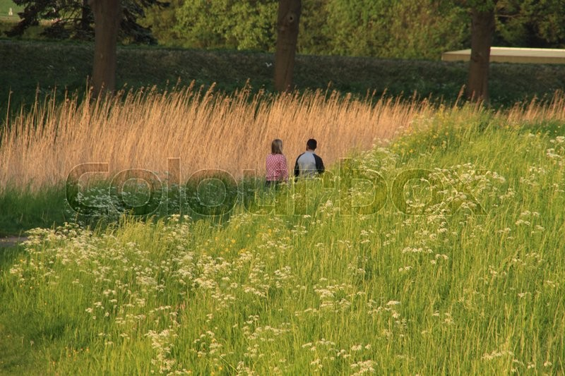 Couple, boy and girl discuter their problems in the park at sunset in the summer, stock photo