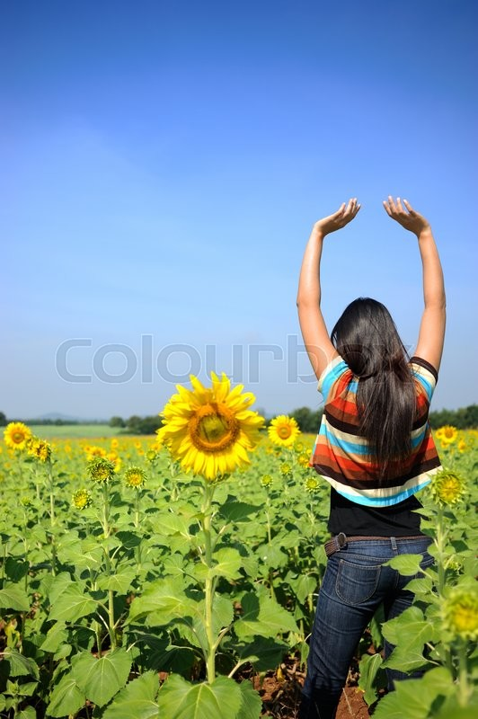 Stock image of 'Woman acting relax in the sunflowers field'