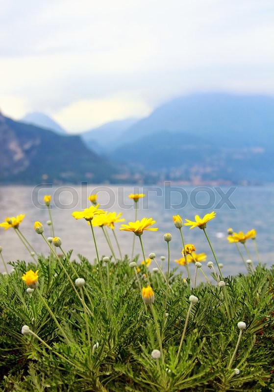 Stock image of 'Como lake, Italy'