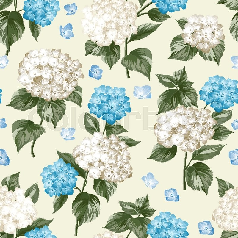 Blue flower hydrangea on seamless background. Mop head hydrangea flower pattern. Beautiful summer flowers on the white. Vector illustration, vector