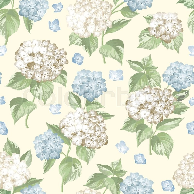 White flower hydrangea on seamless background. Mop head hydrangea flower pattern. Beautiful summer flowers on the white. Vector illustration, vector