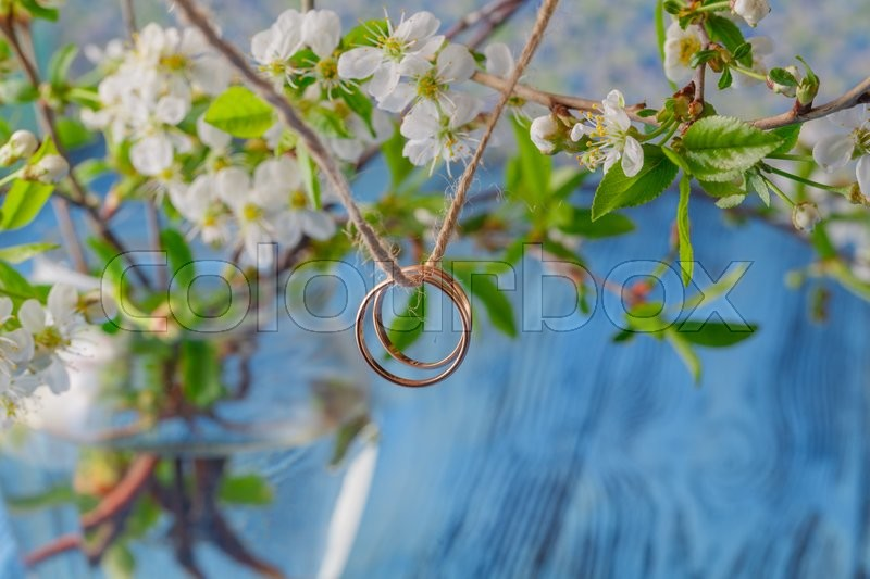 Stock image of 'Wedding ring with spring cherry flowers background'
