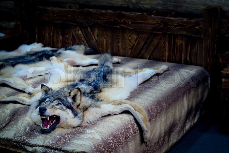 Stock image of 'Wolf fell as a bedcover'