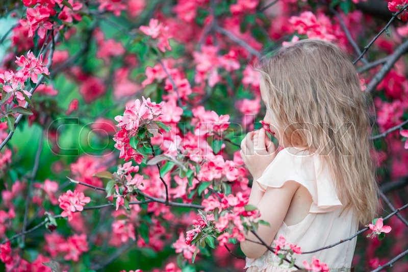 Stock image of 'Adorable little girl in blooming apple garden on beautiful spring day'