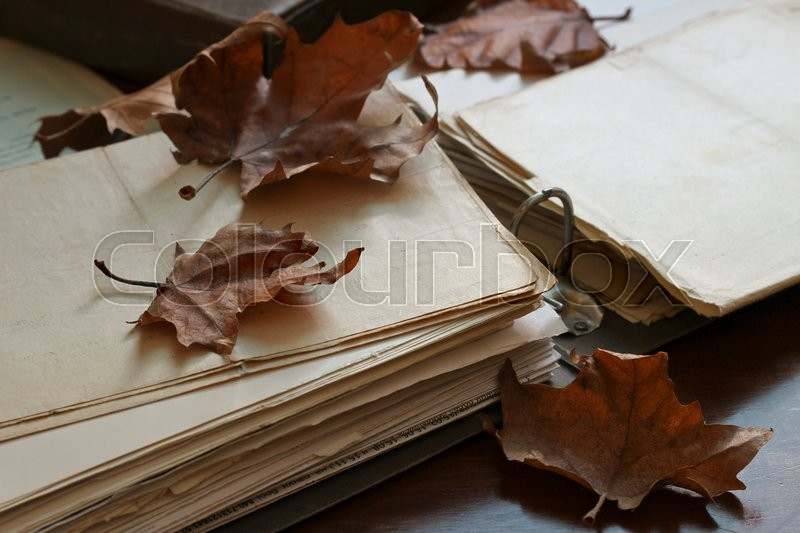 Stock image of 'Folder with old documents,natural light  '