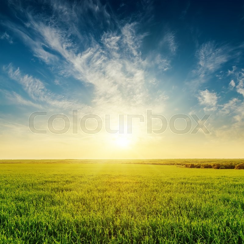 Stock image of 'Golden sunset in cloudy sky over green grass field'