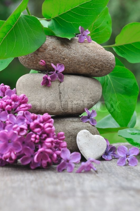 Stock image of 'little heart on pebbles with petals of lilac '