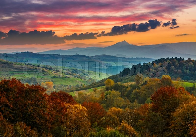 Stock image of 'hillside of mountain range with yellow autumn forest in evening light'