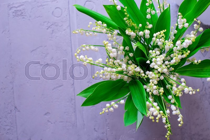 Stock image of 'a bouquet of a small white flower lily of the valley'
