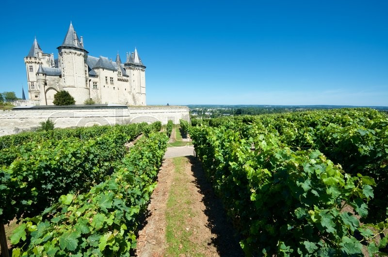 Stock image of 'Saumur castle and Loire River, Loire Valley, France. Saumur Castle was built in the tenth century and rebuilt in the late twelfth century. It is now owned by the city and is one of the most famous castles of the Loire Valley.'