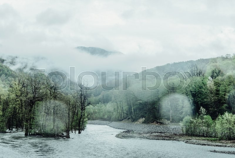 Stock image of 'Rainy weather in summer mountains, river among forest'