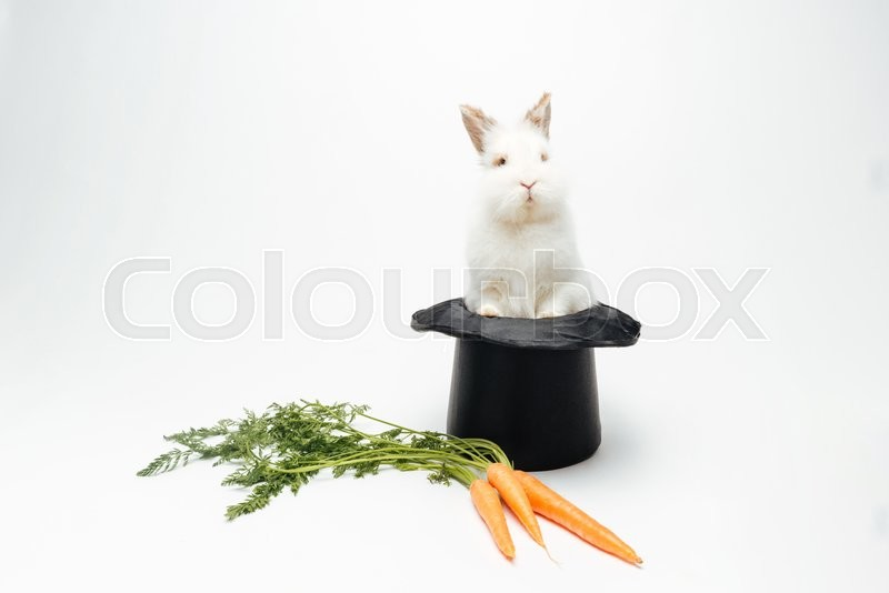 Stock image of 'Rabbit in a hat and carrot isolated on a white background'