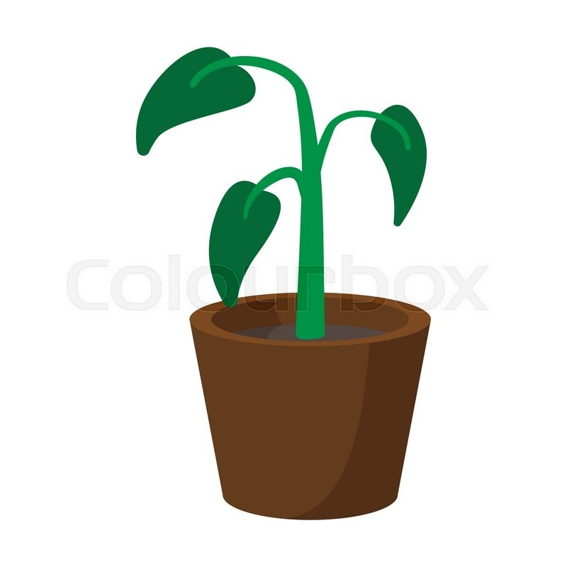 House Plant In Pot Cartoon Icon On A ...