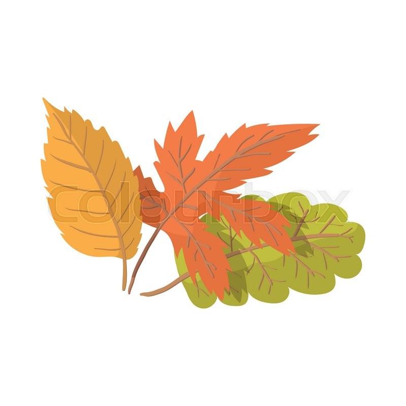 Autumn Leaves Cartoon Icon On The Stock Vector Colourbox