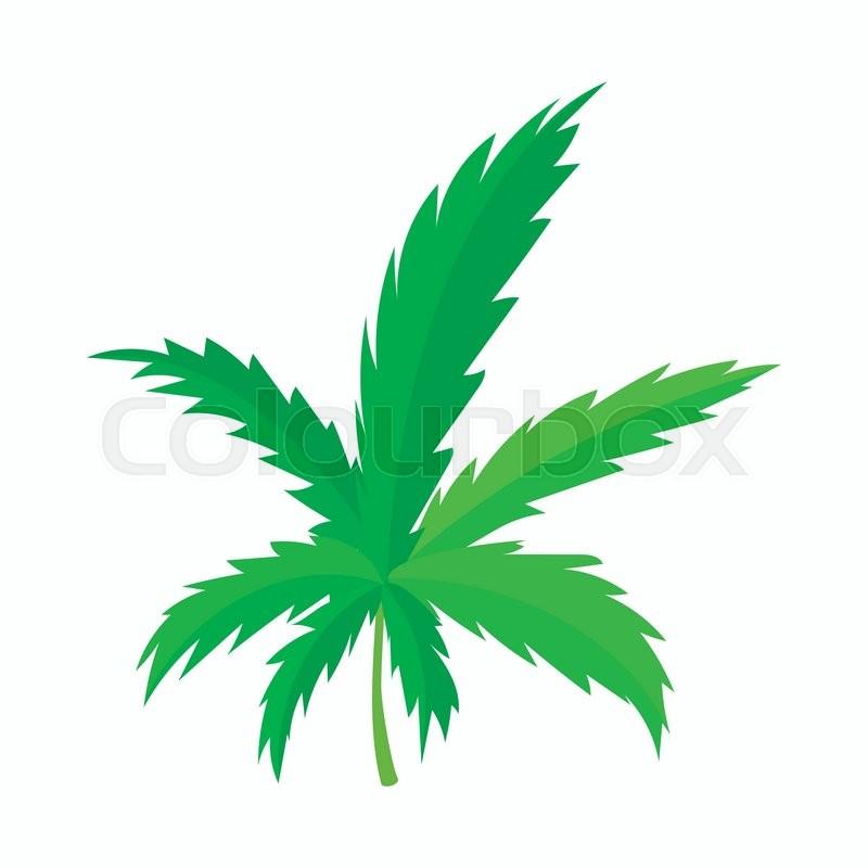 marijuana leaf icon in cartoon style on a white background | stock