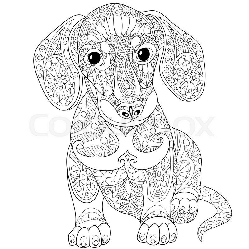 zentangle stylized cartoon dachshund dog isolated on white