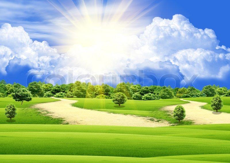 Sunny Days Property Management