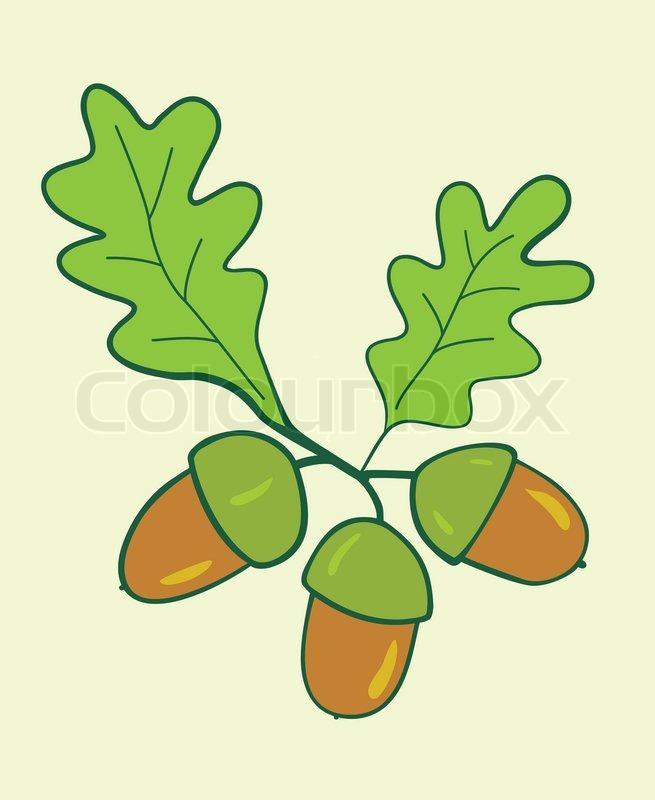 Three oak acorns with leaves - vector illustration | Stock Vector ...