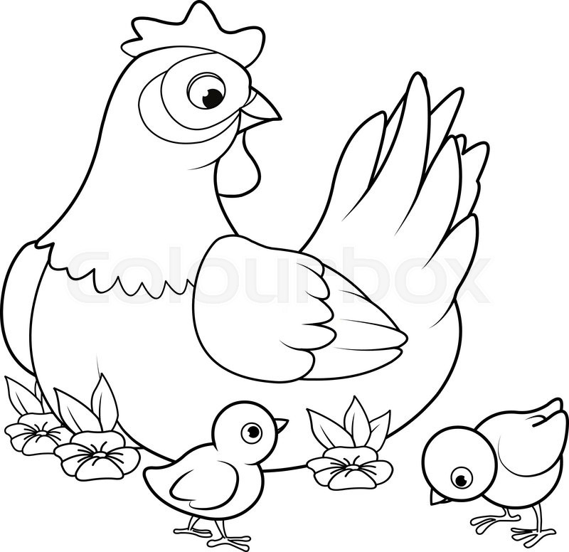 Coloring page of mother hen with its baby chicks Stock Vector