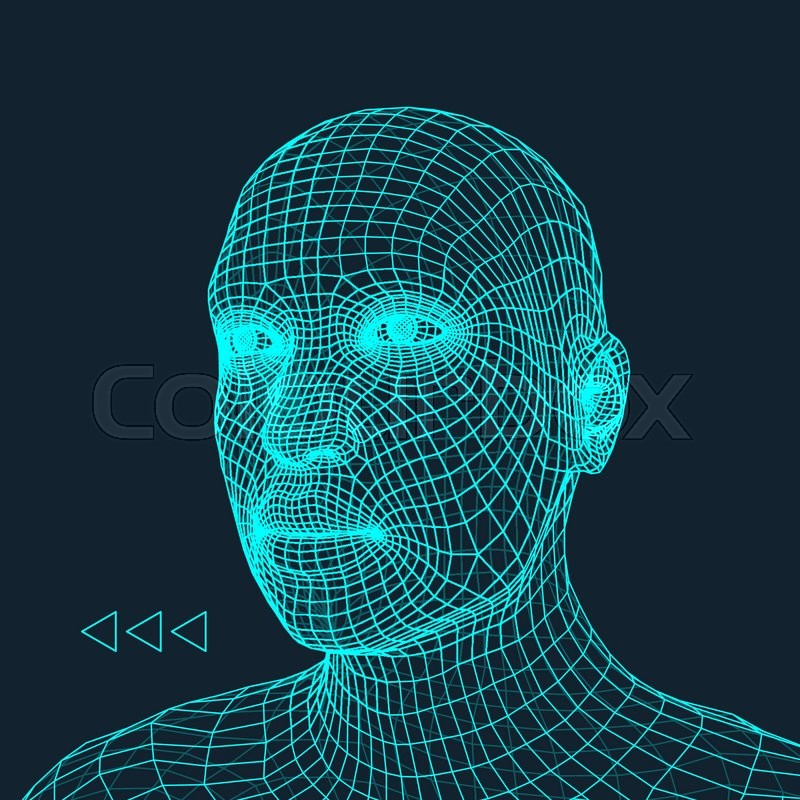 Head of the Person from a 3d Grid. Human Head Wire Model. Human ...