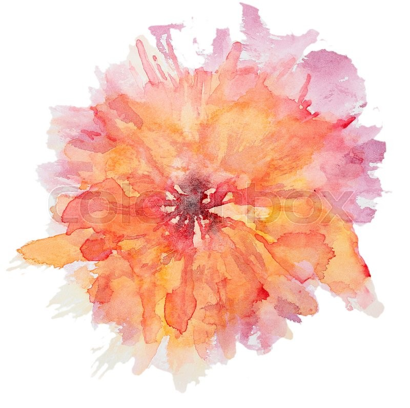 Stock Image Of Abstract Watercolor Flower Beautiful Flowers On White Background Perfect