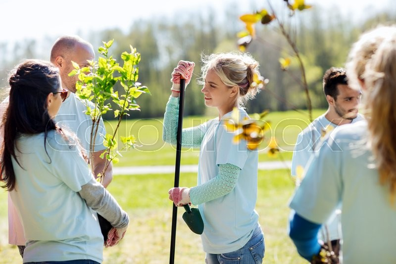 Volunteering, charity, people and ecology concept - group of volunteers with garden tools planting trees and talking in park, stock photo
