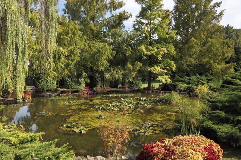 Enchantingly beautiful park garden sigurta shallow pond for Shallow garden pond
