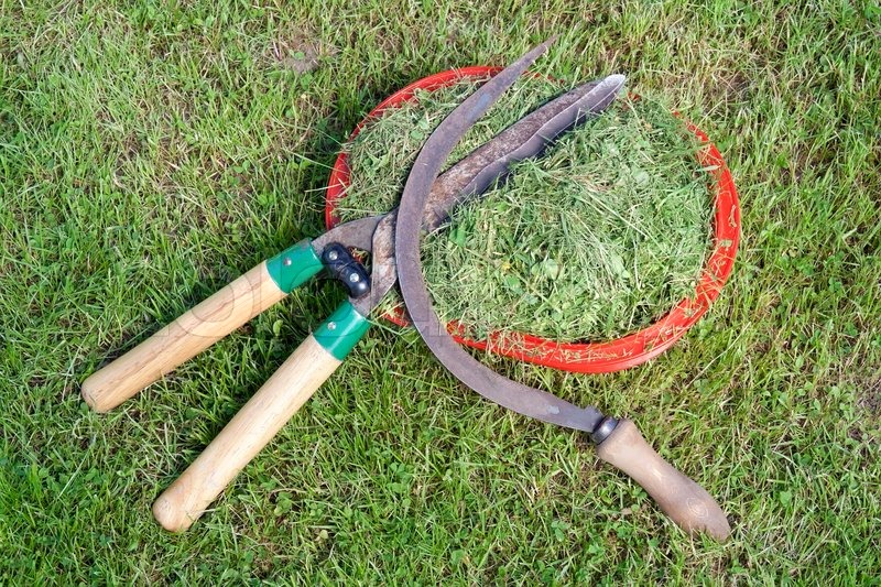how to change old lawn