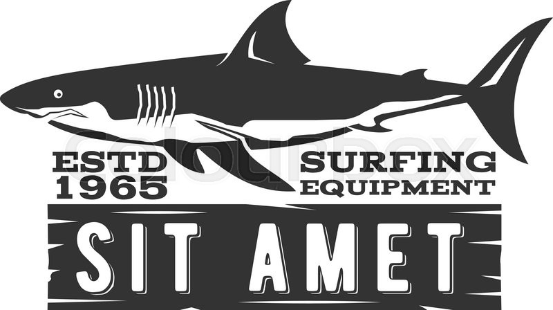vintage surfing store badge design surf gear shop emblem for web