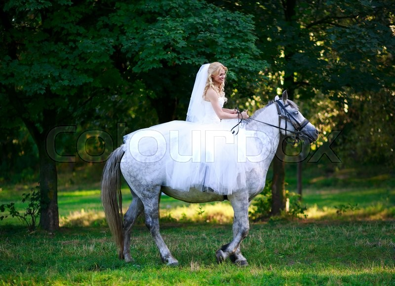 Stock image of ' Concept of marriage and emotion. Bride on a horse in the forest'