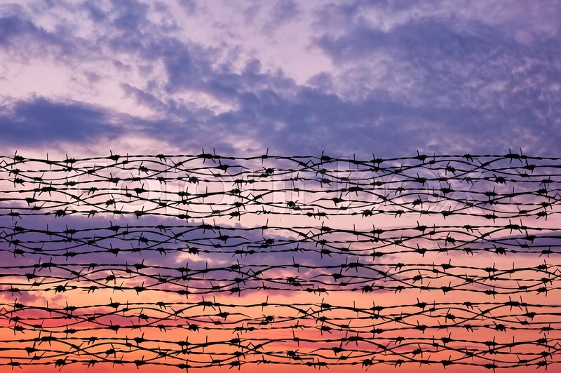 Stock image of 'Concept of security. Silhouette of barbed wire against a beautiful sky'