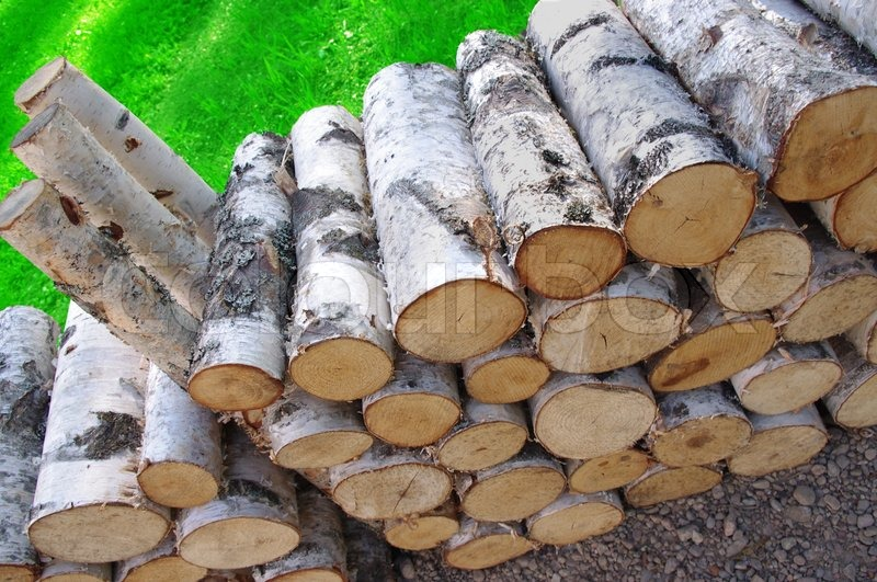 Birch Wood Logs ~ A stack of birch firewood and green grass stock photo