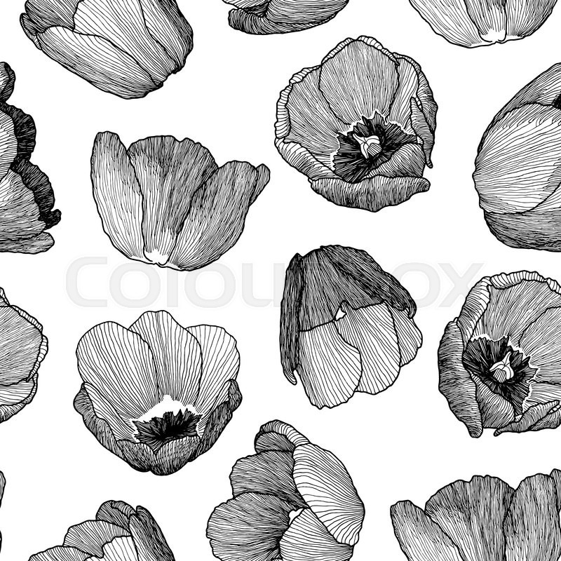 Vector Graphic Hand Drawn Ink Seamless Pattern Of Tulip Flowers In A Linear Style Vintage Texture On Paper And Traced Buds Tulips From Different
